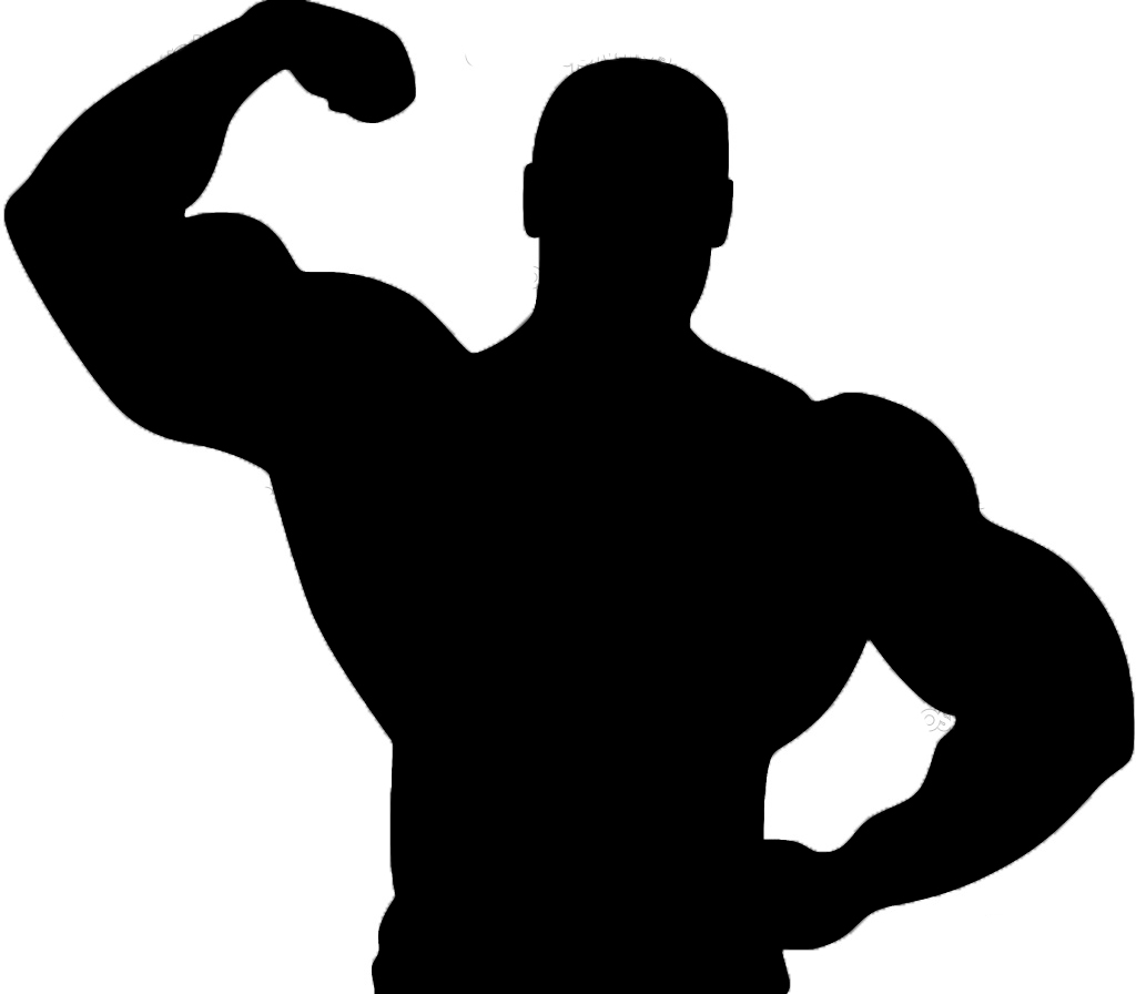 Muscle Clipart | Clipart Panda - Free Clipart Images