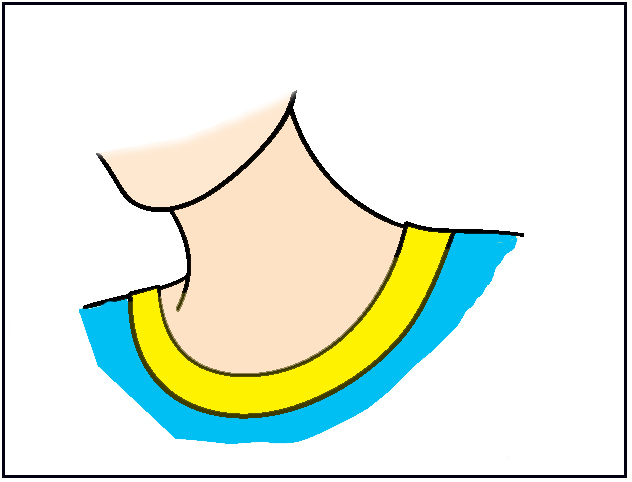 Neckline Drawing : Neck clipart panda free images