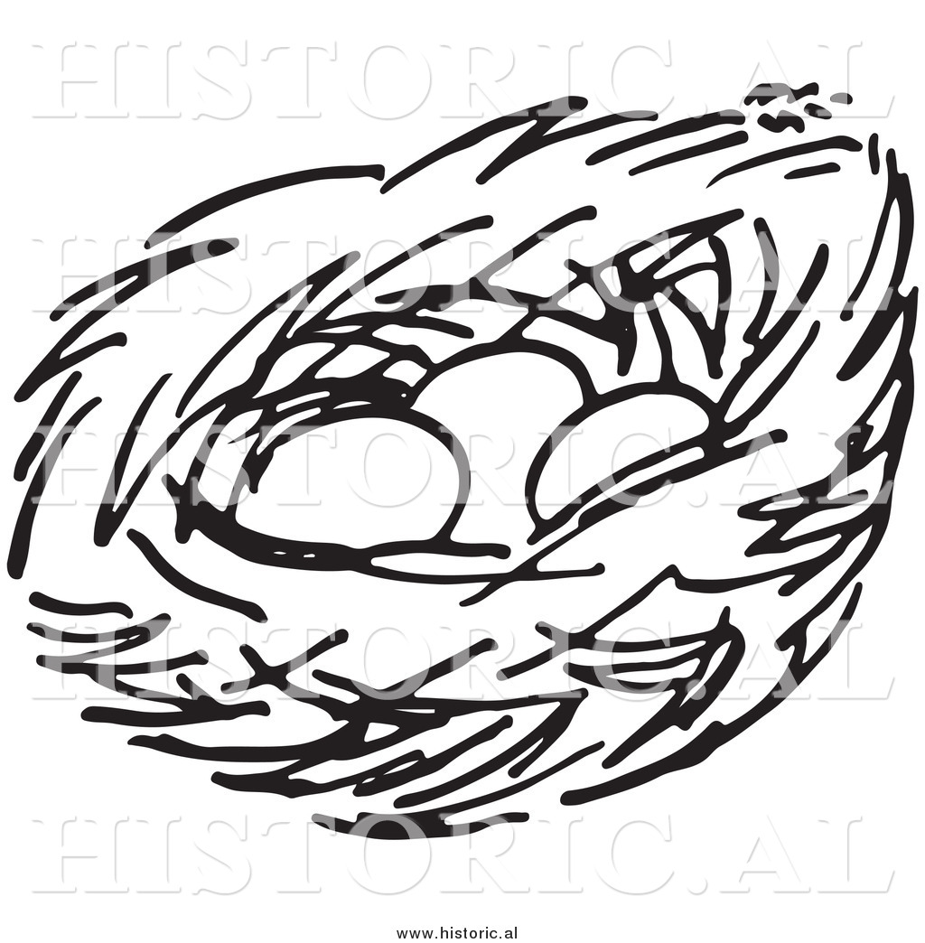 Line Drawing Nest : Nest with eggs clipart panda free images