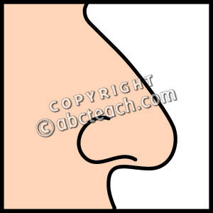 nose clipart