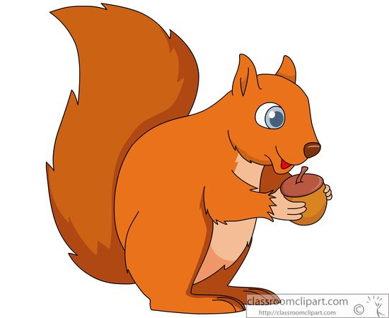 Cartoon Pic Of Squirrel: Clipart Panda - Free Clipart Images