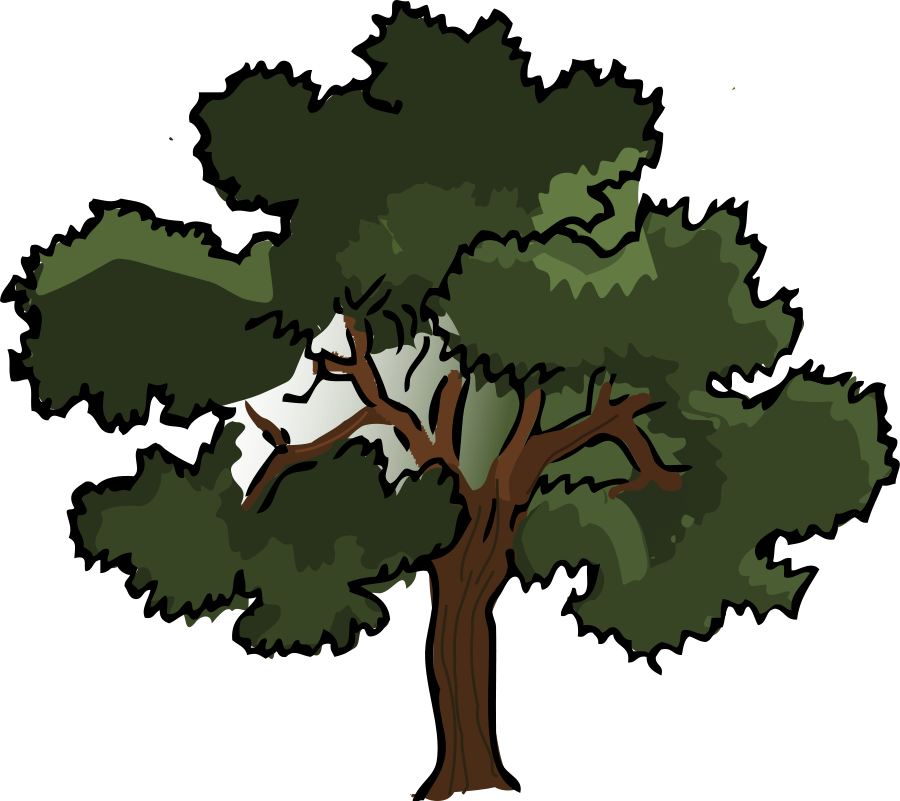 oak tree vector free download clipart panda free clipart images weeping willow tree clipart willow tree clip art black and white