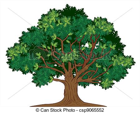 Oak Trees Clip Art