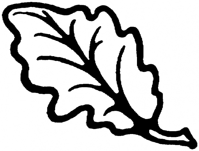 coloring pages oak leaf - photo#8