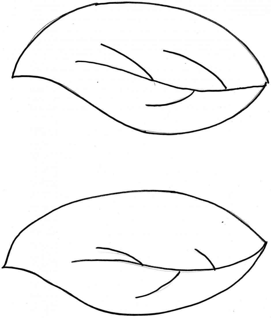 Leaf Coloring Template Coloring Pages