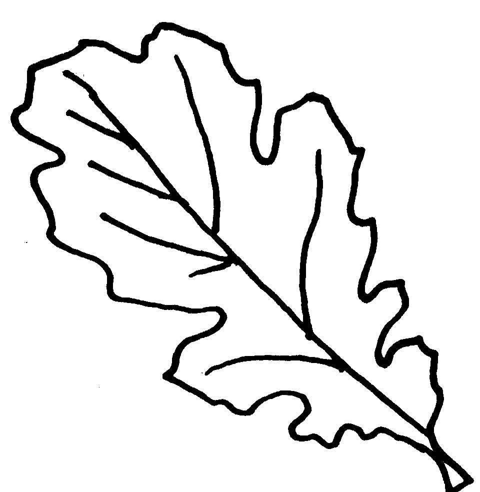 oak leaf coloring pages - photo #2