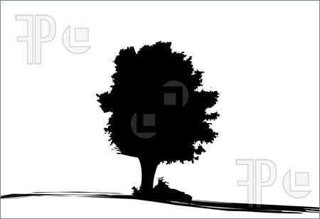 oak%20tree%20silhouette
