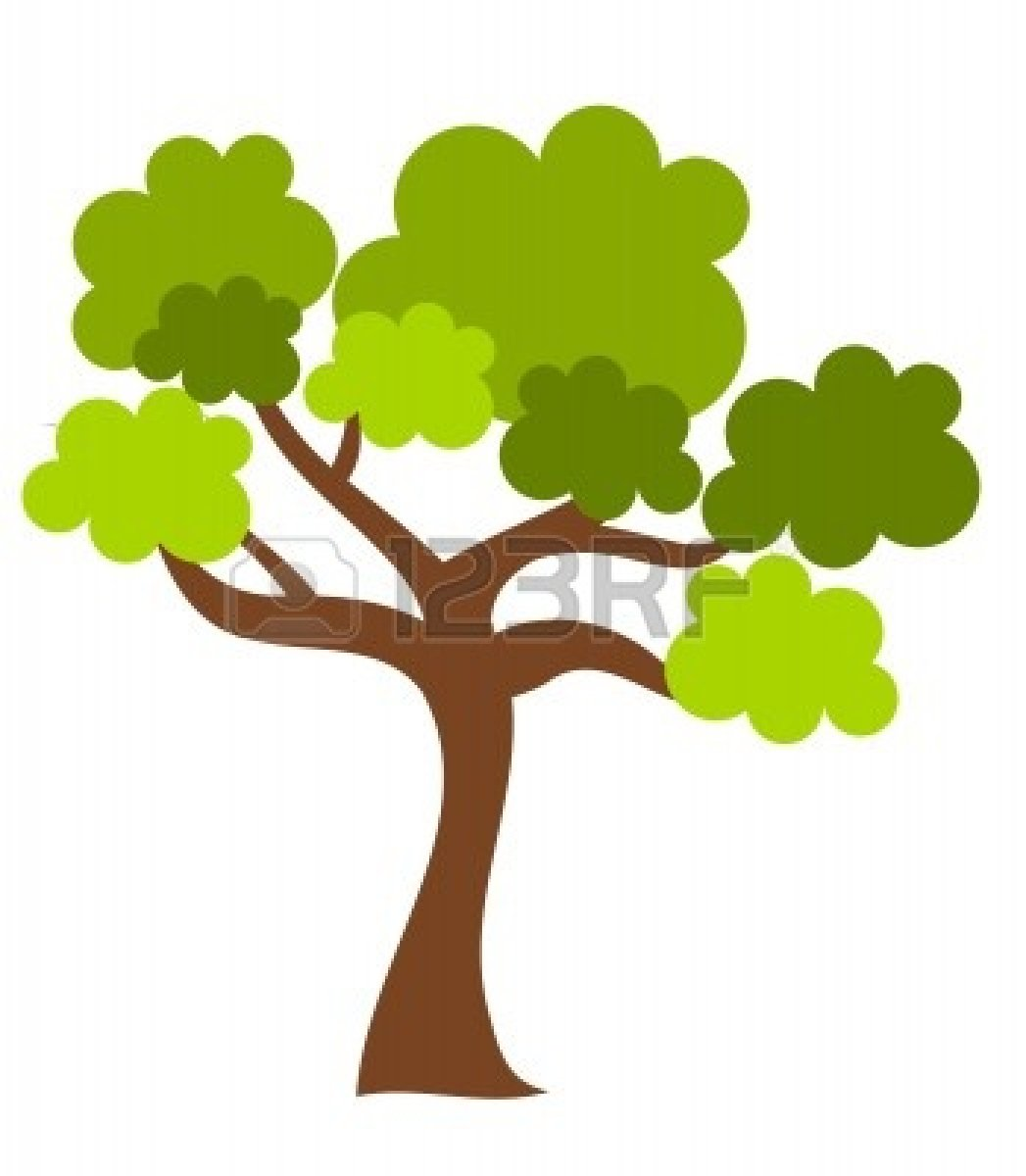 Oak Tree  All About Oak Trees  2020siteorg