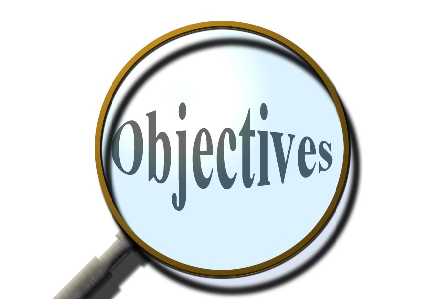 thesis course objectives Course objectives the bsc thesis is an individual assignment and serves as a concluding assignment of your bachelor study the aim of the bsc thesis is to.