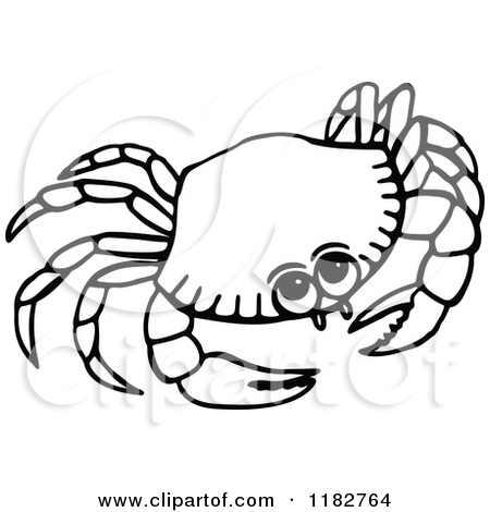ocean-animals-clip-art-black-and-white-1182764-Black-And-White-Crab    Ocean Clip Art Black And White