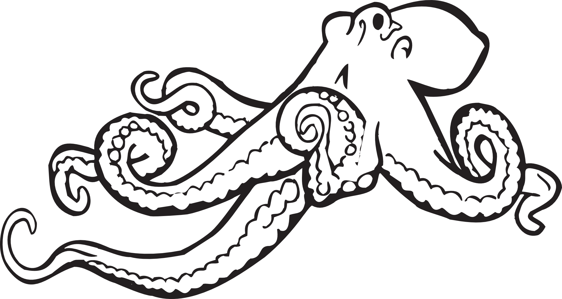 Black Octopus Drawing Octopus Clipart Black