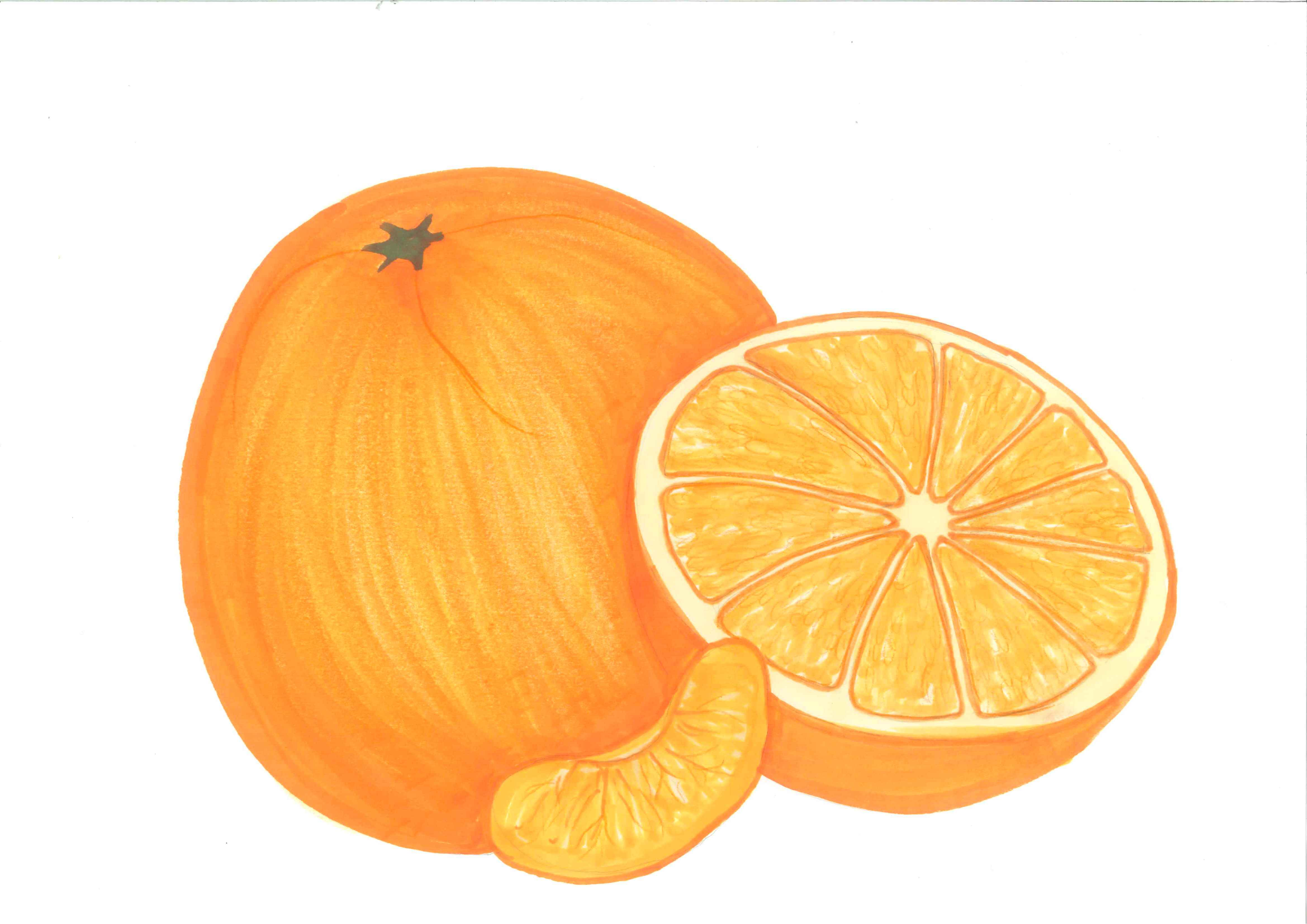orange%20clipart%20black%20and%20white