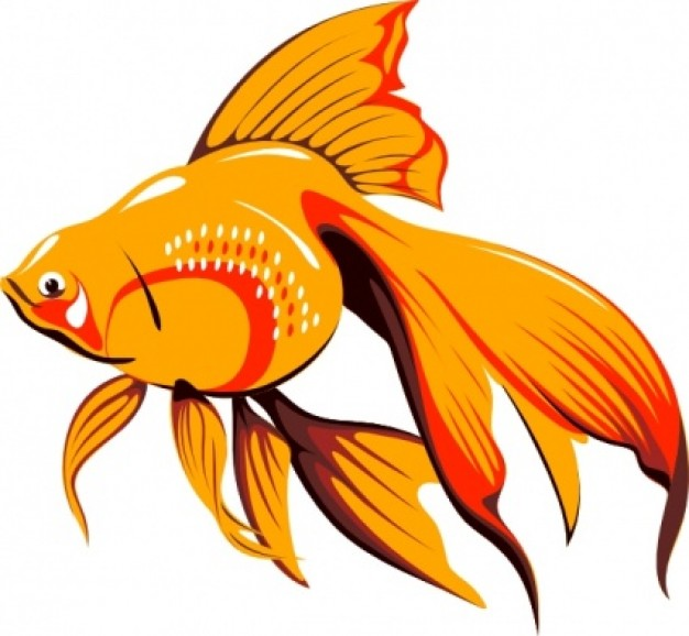 Orange Fish Clipart Clipart Panda Free Clipart Images
