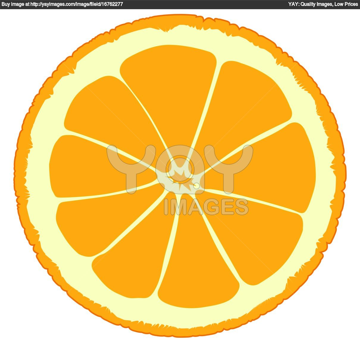 orange slice vector Gallery