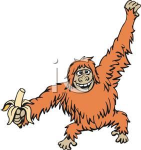 orangutan clip art free clipart panda free clipart images rh clipartpanda com free clipart orangutan free clipart orangutan