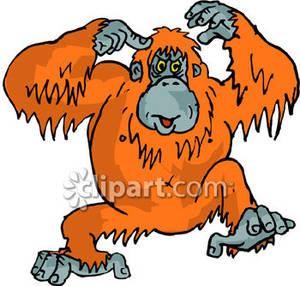 orangutan clip art free clipart panda free clipart images rh clipartpanda com baby orangutan clipart baby orangutan clipart