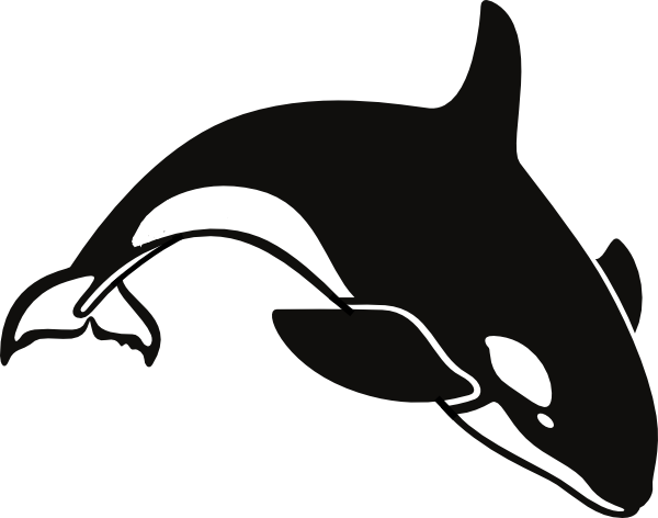orca coloring pages clipart panda free clipart images rh clipartpanda com  orca clip art free