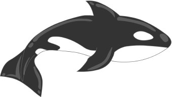 orcas clip art clipart panda free clipart images rh clipartpanda com cute orca clipart cute orca clipart