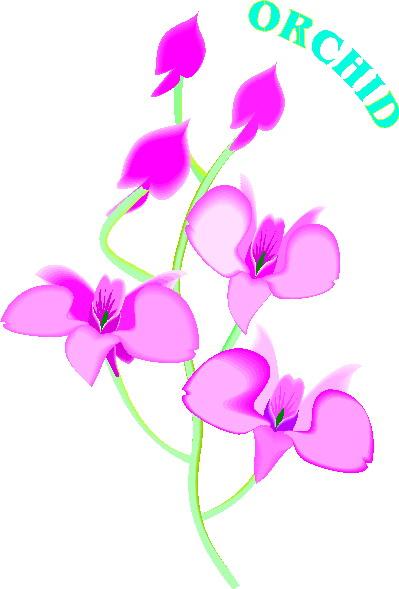 Clip Art Orchid Clip Art orchid flower clip art clipart panda free images art