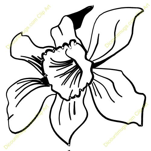 Orchid Flower Clip Art | Clipart Panda - Free Clipart Images