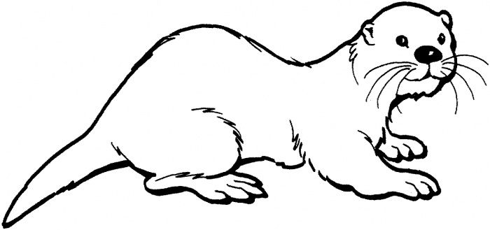 Sea Otter Coloring Pages Coloring Coloring Pages