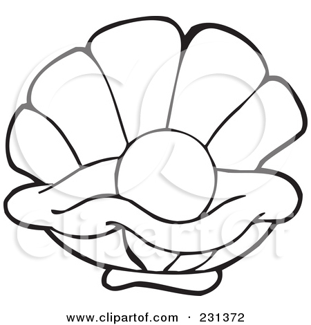 how to draw an open clam shell