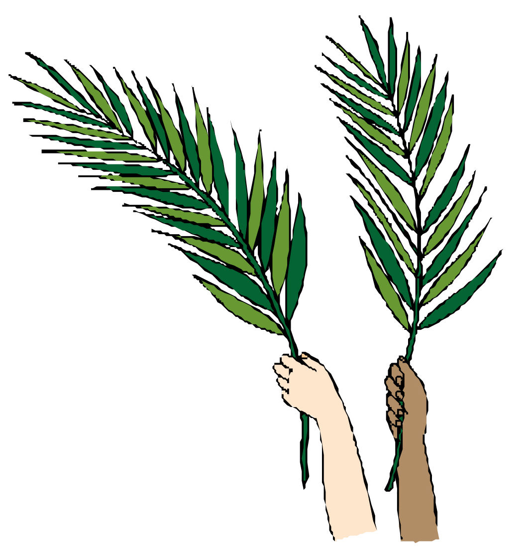 Pics Photos  Palm Sunday Leaves 2014 Palm Leaves Background Stock