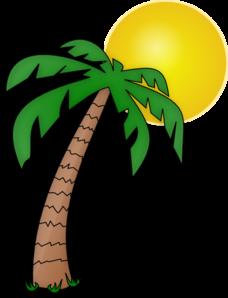 palm tree clip art printable clipart panda free clipart images rh clipartpanda com clip art palm tree plan view clipart palm trees beach