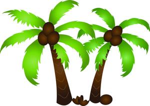 Clip Art Coconut Clip Art palm tree coconut clipart panda free images