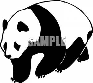 Black and White Panda | Clipart Panda - Free Clipart Images