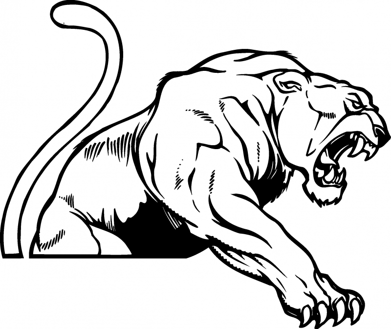 Cougar Face Line Drawing : Panther clip art mascots clipart panda free images
