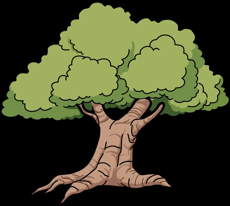 Tree Images Papaya Tree Clipart
