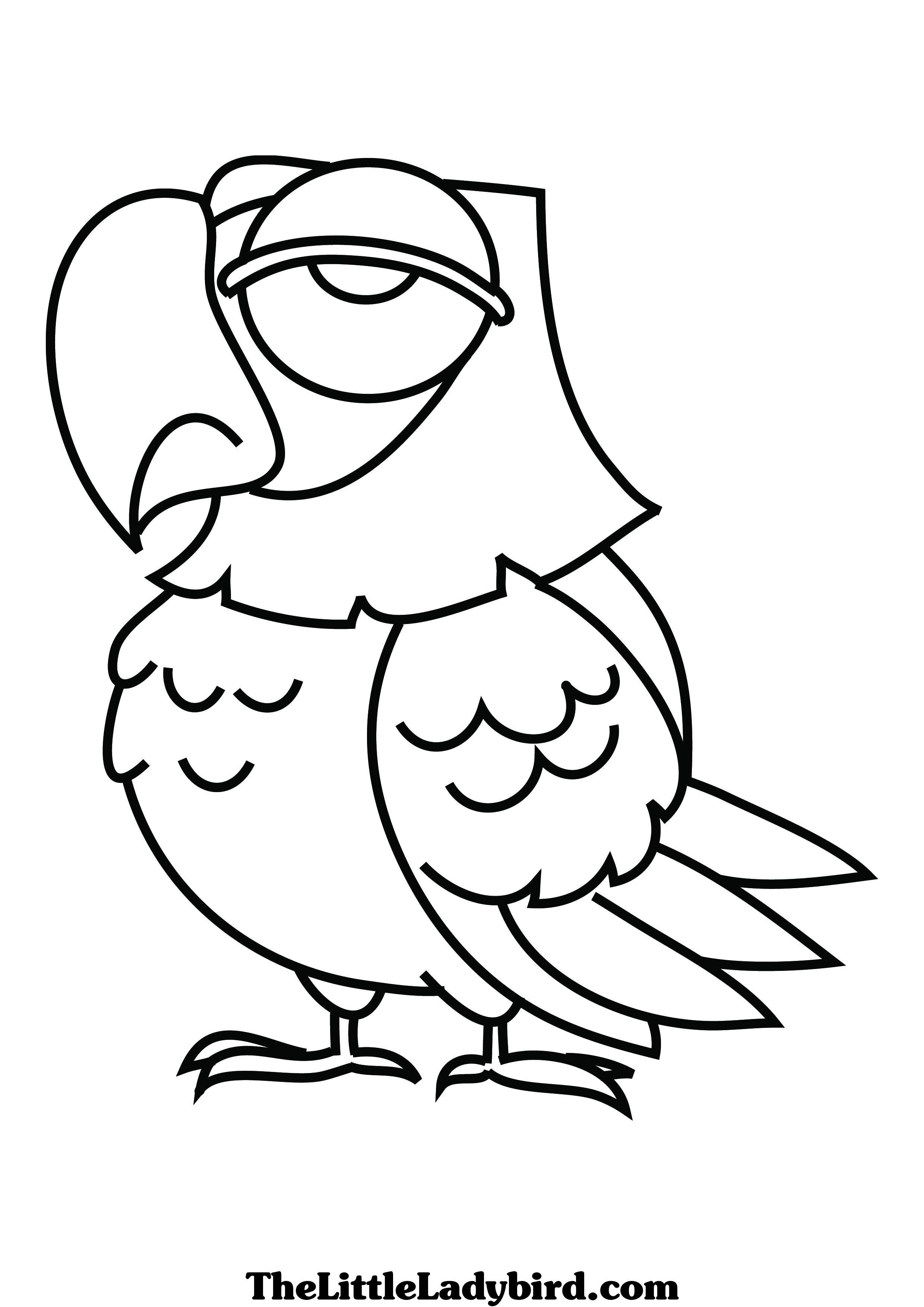 parrot coloring pages clipart panda free clipart images