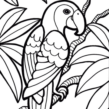 parrot20coloring20pages