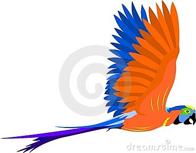 Cartoon parrot flying - photo#27