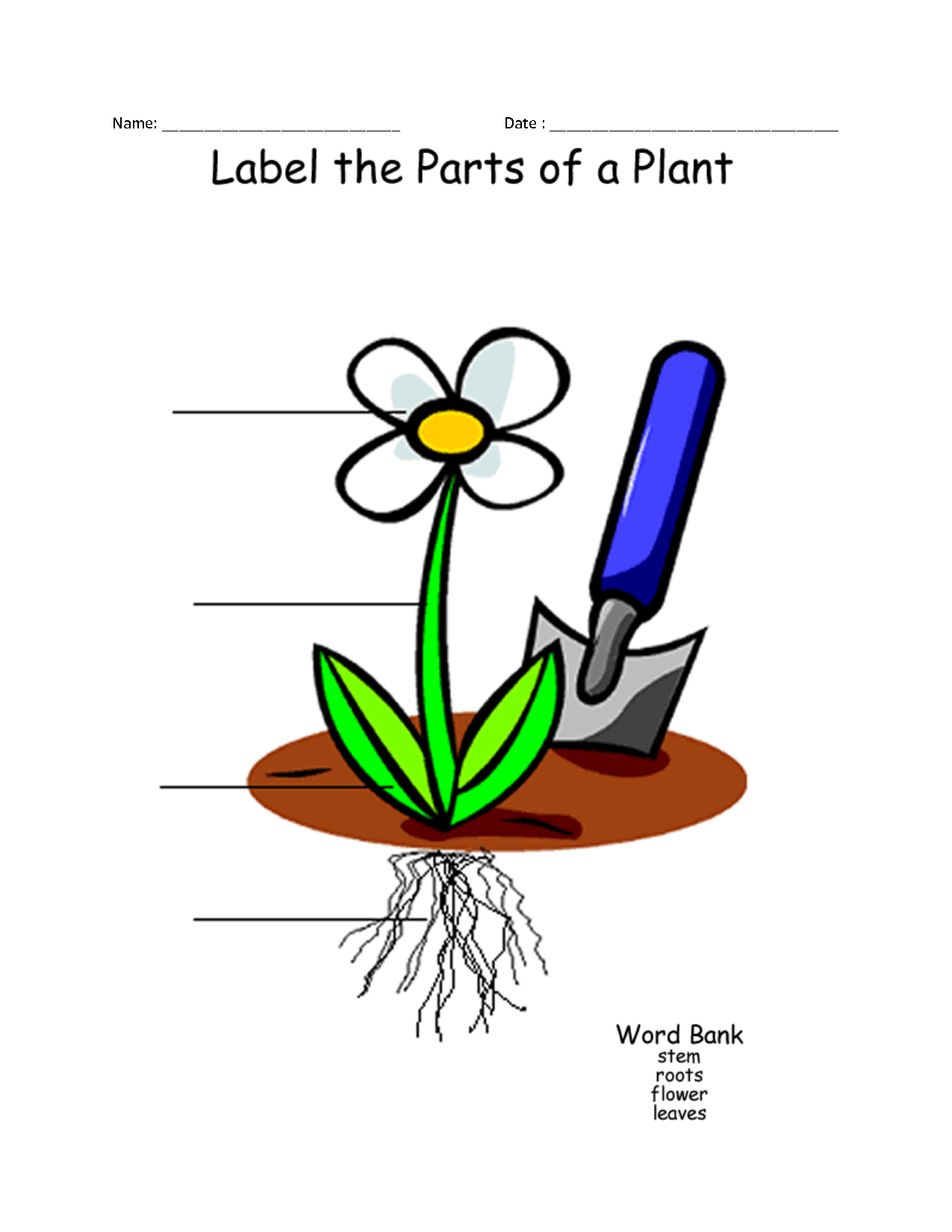 Plant drawings for kids