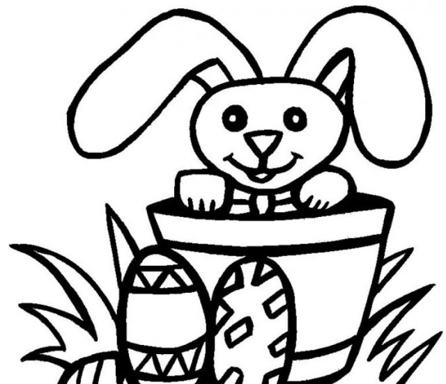 Parts of a plant for kids clipart panda free clipart for Parts of a plant coloring page