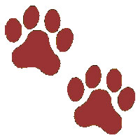 paw%20clipart
