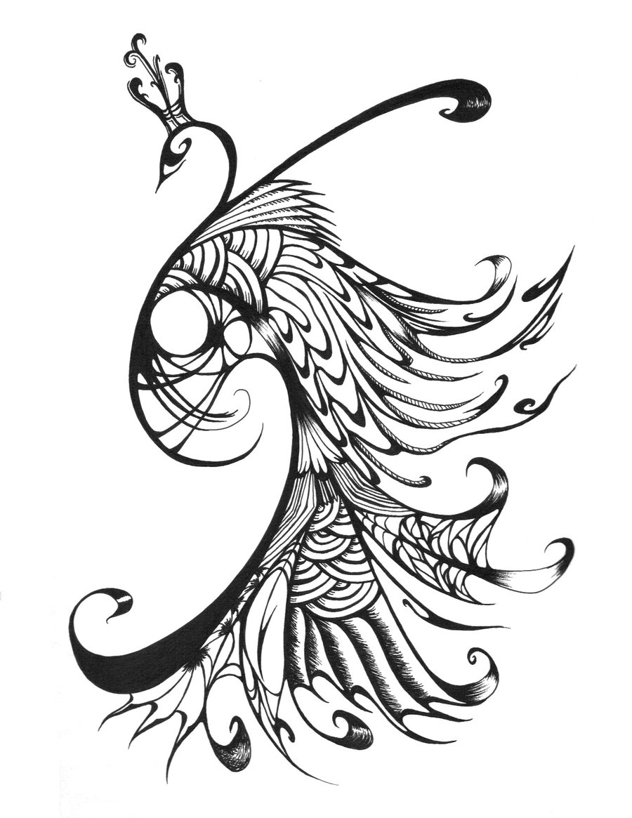 Line Drawing Of Peacock : Peacock black and white clipart panda free images