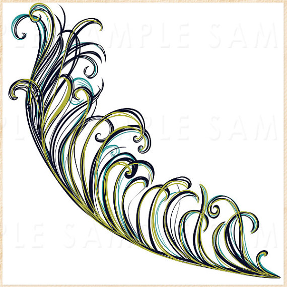 Go Back > Gallery For > Peacock Feather Black And White Clip Art