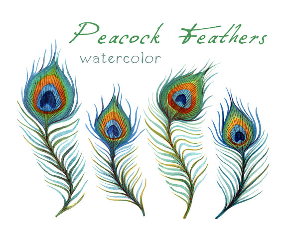 Peacock Feather Clipart Black And White | Clipart Panda - Free Clipart ...
