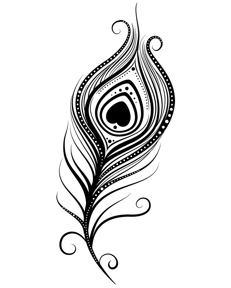 Line Drawing Peacock : Peacock feather coloring page clipart panda free