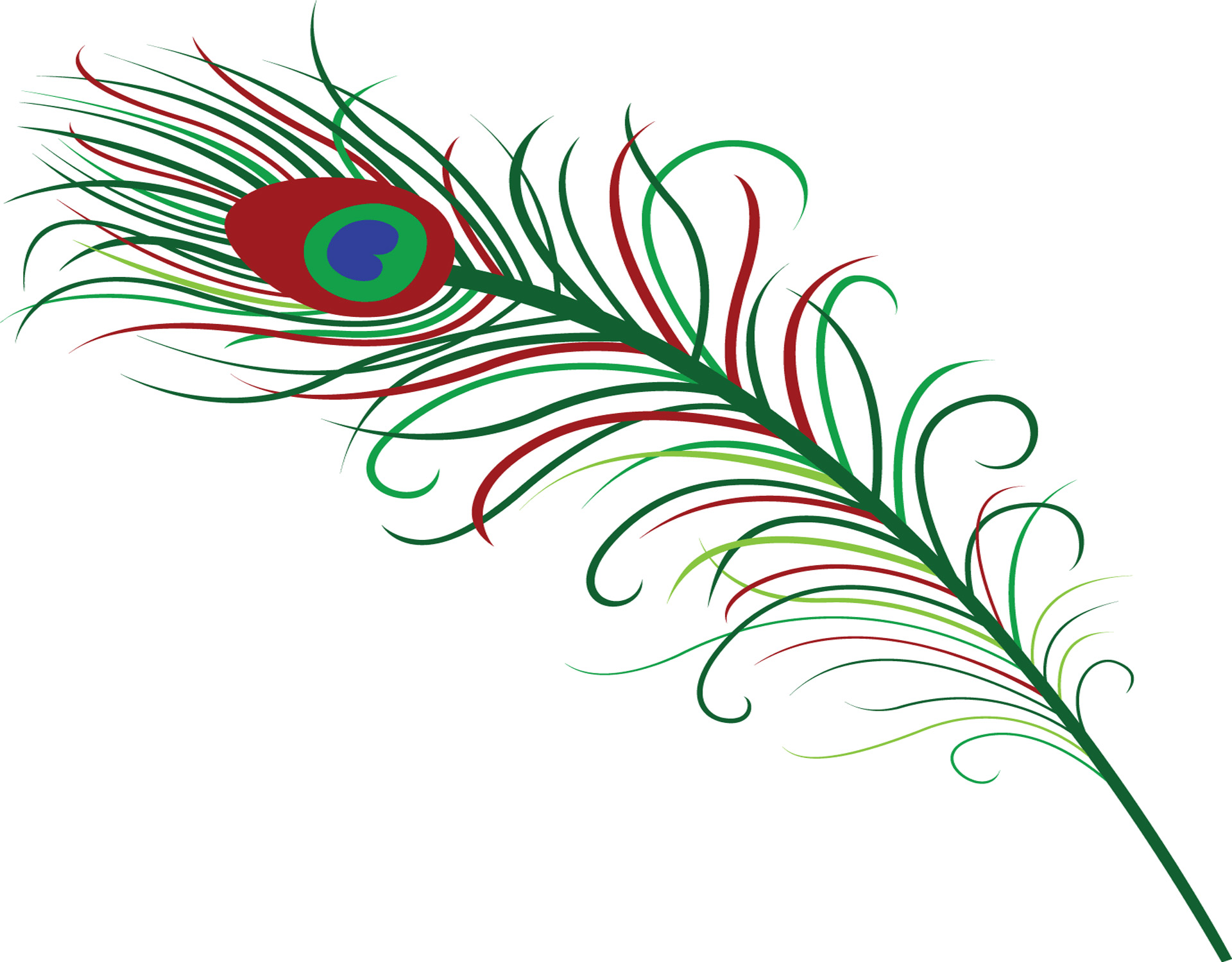 Peacock Feather Clipart Panda Free Clipart Images