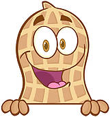 Image result for free peanut clipart