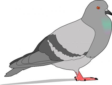 pigeon clip art clipart panda free clipart images rh clipartpanda com flying pigeon clipart flying pigeon clipart
