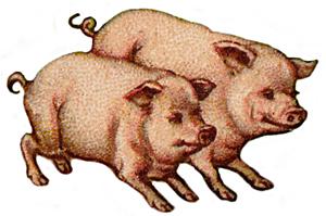 Pigs Clip Art Images | Clipart Panda - Free Clipart Images