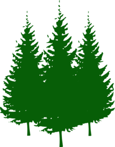 pine tree clipart clipart panda free clipart images rh clipartpanda com silhouette of pine trees clipart tall pine trees clipart
