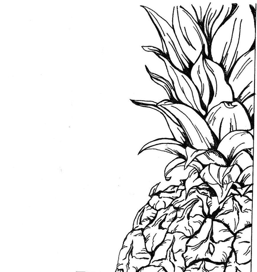 Line Drawing Prints : Pineapple art prints clipart panda free images