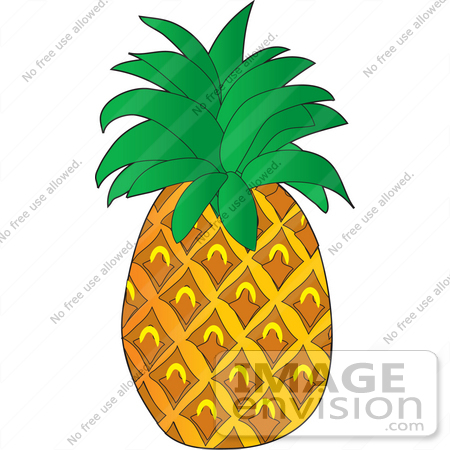 Pineapple Clipart   Clipart Panda - Free Clipart Images