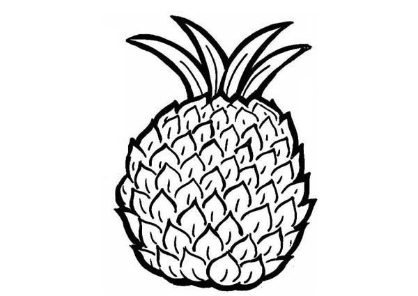 Coloring Page Pineapple Clipart